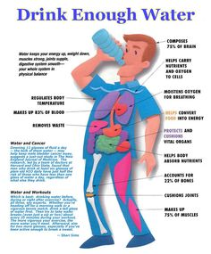 Living a healthy happy life.: The Importance of Drinking Enough Water