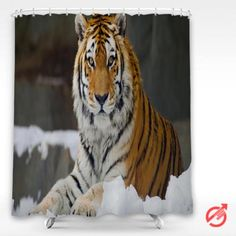 Cheap Tiger wild cat muzzle Shower Curtain