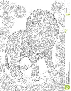 495 beste afbeeldingen coloring tiger in 2020