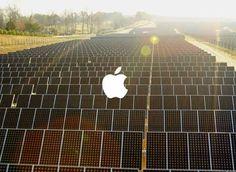Apple podría empezar a vender energía eléctrica al por mayor