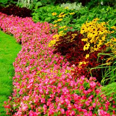33 Beautiful Flower Beds Adding Bright Centerpieces to Yard Landscaping and Garden Design – Lushome Home Landscaping, Landscaping Company, Landscaping With Rocks, Front Yard Landscaping, Diy Garden, Dream Garden, Summer Garden, Garden Grass, Garden Web