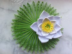 Quilling waterlily flower