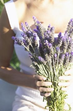 """How to Grow Lavender Inside""  Next project = growing lavender.  Maybe I have a green thumb after all."