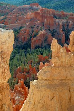 Bryce Canyon National Park in Utah. Just as beautiful in person.....I cried the moment I walked up to it (this is not my photo)
