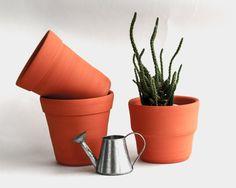 Ceramic small plant pot, Ceramic planter, Succulent planter, Ceramics & pottery, Flower plant pot, Planter flower pot, Cute clay plant pots by MomopotteryStudio on Etsy