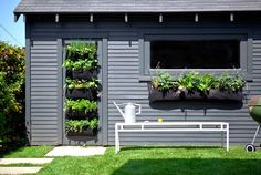 Five Easy Steps for Creating an Indoor/Outdoor Vertical Garden or Green Wall
