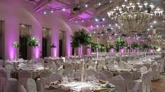 Evento : Cena de Gala BlueMg -  Es un Evento muy Formal, que se caracteriza por al menos tres platos, entretenimiento y discursos. Se generan contactos y oportunidades. @BelieveinBlueMg