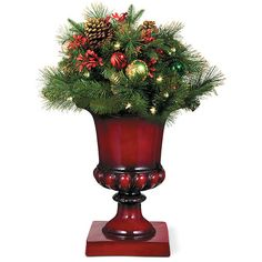 "Improvements Merry and Bright Lighted Christmas Urn Filler-24"" (420 DKK) ❤ liked on Polyvore featuring home, home decor, holiday decorations, christmas decor, christmas door decor, christmas garland, christmas hanging basket, christmas urn filler, christmas wreath and entryway christmas decor"