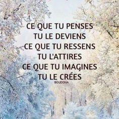 #citation  #pense  #deviens  #ressens  #attire  #imagine  #creer  #arbre  #tree