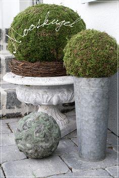 creativLIVE: Moss Ball + Wreath - Debbie K - Source by Daywakeu Garden Shop, Garden Pots, Container Plants, Container Gardening, Farmhouse Christmas Decor, French Country Decorating, Autumn Inspiration, Outdoor Gardens, Fall Decor