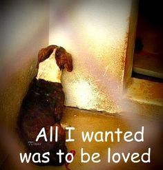 BUT NO ONE CAME FOR ME...Saving ONE animal won't change the world but it will change the world for THAT ONE animal
