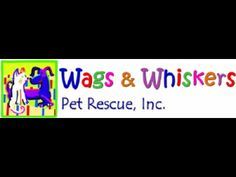Wags and Whiskers Pet Rescue - FAB FINDS!