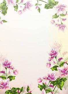 BACKGROUND / Free vector Vector background Colorful floral background