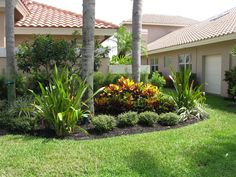 Captivating Florida Landscaping Ideas For Front Yard Pictures Decoration Ideas. Landscaping Gallery at Florida Landscaping Ideas For Front Yard Palm Trees Landscaping, Cheap Landscaping Ideas, Backyard Trees, Florida Landscaping, Home Landscaping, Tropical Landscaping, Tropical Garden, Front Yard Landscaping, Landscaping Design