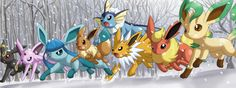 Eevee and his evolutions