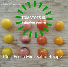 Tomatoes 101: Your Guide to Tomato Varieties and a Cherry Tomato and Fresh Mint Salad Recipe. Your guide to tomato flavor according to color, varieties, and uses for cooking and a simple, summery cherry tomato.