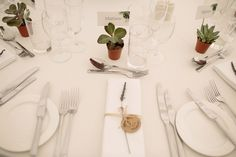 Succulent wedding favours/place name holders. Photography Joanna Brown Photography