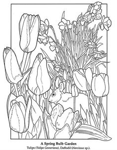 """iColor """"Gardens"""" ~ """"In my garden there is a large place for sentiment. My garden of flowers is also my […] Make your world more colorful with free printable coloring pages from italks. Our free coloring pages for adults and kids. Dover Coloring Pages, Spring Coloring Pages, Easter Coloring Pages, Printable Coloring Pages, Adult Coloring Pages, Coloring Sheets, Coloring Pages For Kids, Coloring Books, Free Coloring"""