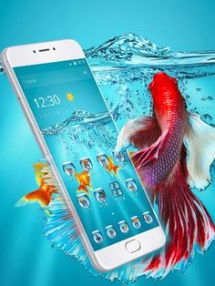 Beautiful red fish and gold fish tank for a realistic experience. Goldfish Tank, Dreamcatcher Wallpaper, Underwater Fish, Red Fish, Live Wallpapers, Simple Designs, Iphone, Beautiful