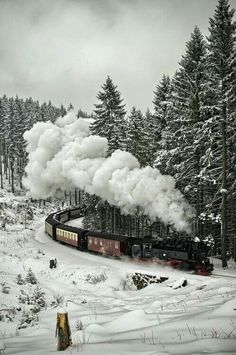 Snow run.