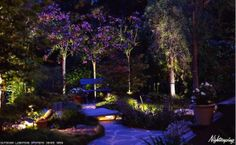 I love the landscaping here. The lights are placed perfectly so that you can see but it's not blinding. The purple is really fantastic!