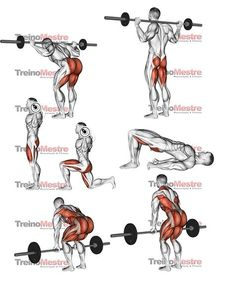 Upper-back weight exercises Gym Workout Chart, Gym Workout Tips, Weight Training Workouts, Fitness Workouts, Butt Workout, Fun Workouts, Glutes Workout Men, Glute Workouts, Hamstring Workout