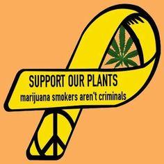 Support your local cannibis #marijuana #legalize #peace http://maryjane4200.blogspot.com