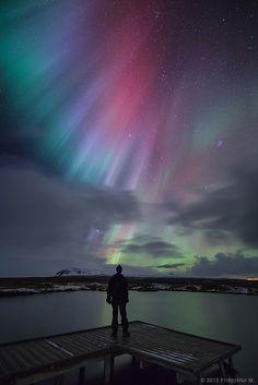 Nature's Christmas lights - Iceland