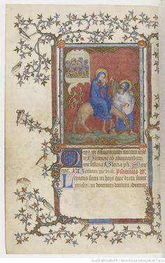 Bibliotheque Stanislas Nancy MS 305 - Szukaj w Google