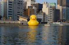 Created by an artist in the Netherlands and trying to get around the world to spread friendliness to all. The Rubber Duck knows no frontiers, it doesn't discriminate people and doesn't have a political connotation. The friendly, floating Rubber Duck has healing properties: it can relieve mondial tensions as well as define them. The rubber duck is soft, friendly and suitable for all ages!