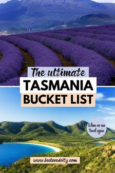 Discover more about Tasmania, Australia, and the best things to do there. We tell you everything about the places you must see in Tasmania and the best activities there! Visit Australia, Australia Travel, Queensland Australia, Western Australia, Nature Photography Tips, Ocean Photography, Travel Photography, Tasmania Road Trip, Tasmania Travel