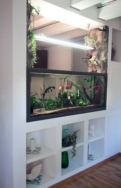aquarium nat rliches thema deko schrank eingebaut aquarium ideas room divider pinterest. Black Bedroom Furniture Sets. Home Design Ideas