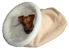 Cozy Dog Beds Burrow Beds Chihuahua Bed SMALL by PetPizzaz2, $46.95