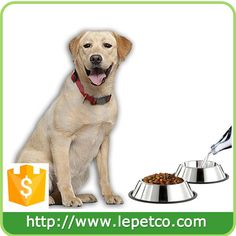 WeiMay NonSlip Pet Bowls Footprints Stainless Steel Dog Cat Bowls Food Water Feeder Dishes Many Sizes Available *** Be certain to have a look at this amazing item. (This is an affiliate link). Dog Feeding Bowls, Elevated Dog Bowls, Stainless Steel Dog Bowls, Pet Lizards, Pet Monkey, Dog Feeder, Pet Safe, Pet Bowls, Large Dogs