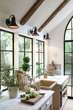 the windows, lights, beams, door, counter, topiary....I could go on and on. white country kitchen.