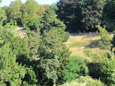 Learning how to NOT do work- and take photos. Buttes Chaumont, Paris.