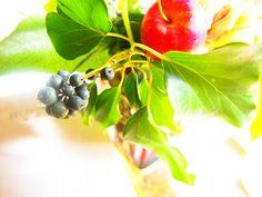 apple,black nuts