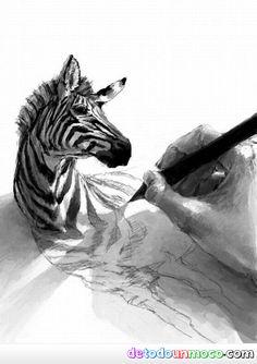 dibujando-una-cebra