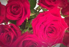 Washington flower shop refuses order for gay couple - Blog - MyNorthwest.com