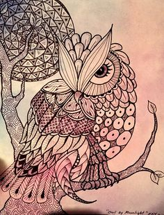 Zentangle owl on watercolored paper.