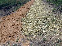 How to Dig Swales---for the back field fruit trees
