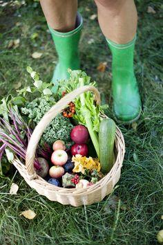 Höstens matkorg Healthy Food, Healthy Recipes, Wicker Baskets, Garden, Decor, Healthy Foods, Garten, Decoration, Lawn And Garden
