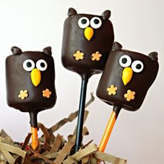 Owl Marshmallow Pops are adorable for any owl themed party, centerpiece or care package! A fun, fast, and easy project for the whole family! Marshmallow Halloween, Halloween Chocolate, Marshmallow Pops, Halloween Treats, Halloween Kids, Halloween Costumes, Chocolate Pops, Melting Chocolate, Caramel Recipes
