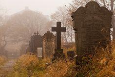 cemeteries tumblr