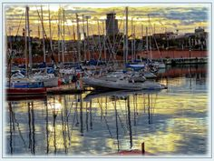 Are you a #sailing addict? Come to #Spain, the perfect place to practice it during all the year! We will prepare for you a perfect sailing trip... Www.spainforreal.com  #barcelona #port #sailing #spain #travel #experiences #agency  Photo by Pepe Martinez