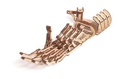 Have you ever wanted to have a hand of a cyborg? The wooden Hand is fully functional and very entertaining. You can use the hand to pick up items or trick your friends. Wooden Hand, Wooden Diy, Diy Wooden Toys Plans, Robot Kits For Kids, Wooden Model Kits, Robot Hand, Mechanical Hand, Wooden Puzzles, 3d Puzzles