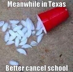 As a Texan, I can confirm that this is indeed accurate