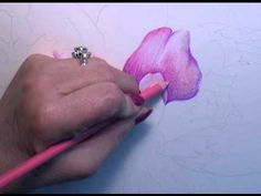 Colored Pencil Instruction with Paula Leopold.  Excellent brief tutorial - as with most, it is just a sketch of a full tutorial you can buy.  Good technique demo though.