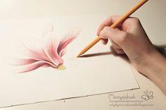 Artystyczne Ciekawostki Marcysibush: Jak kolorować magnolię kredkami ?