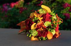 fall flowers for beach weddings - Bing Images